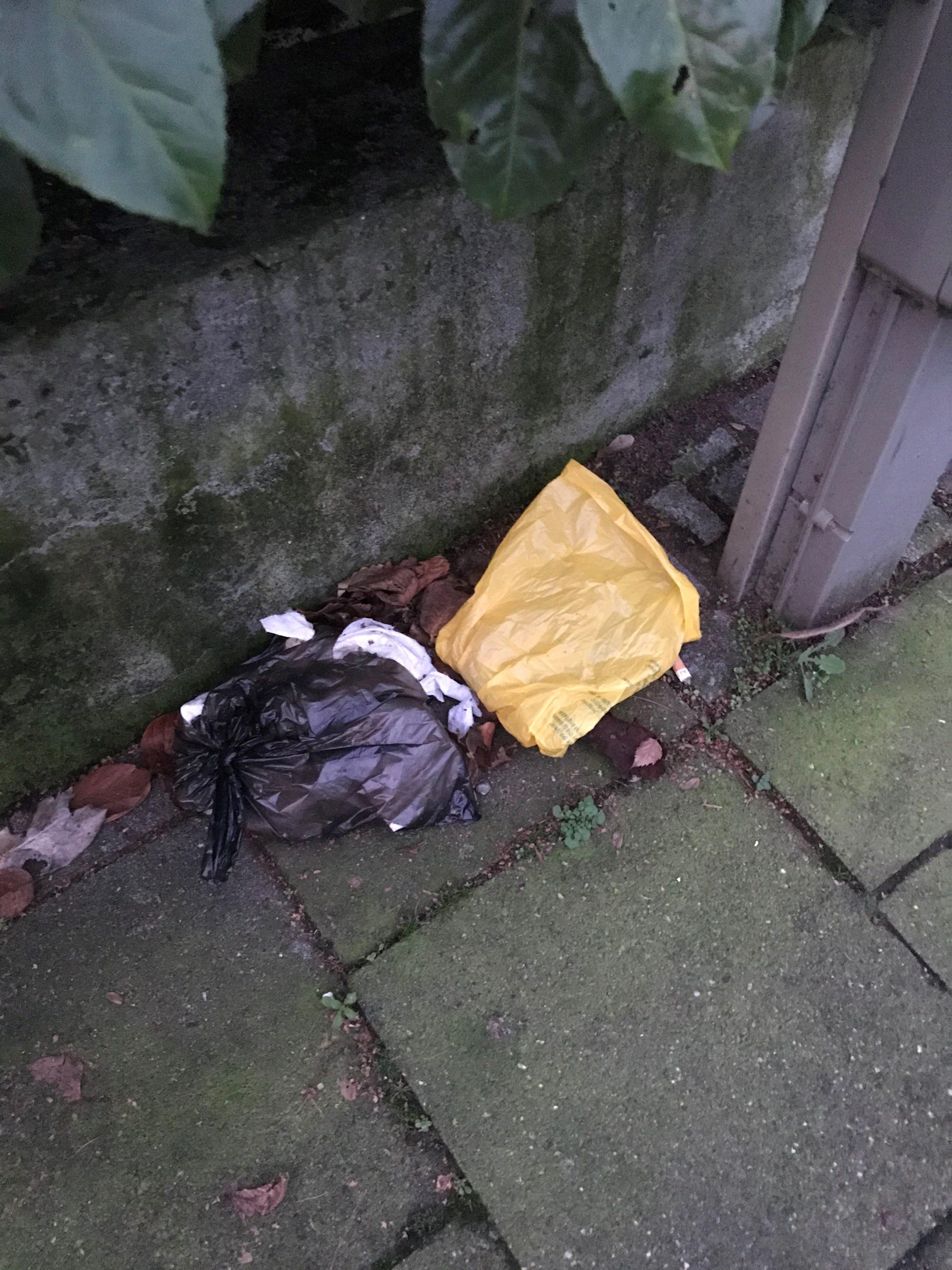 Ein Schandfleck: Achtlos weggeworfene Hundekotbeutel